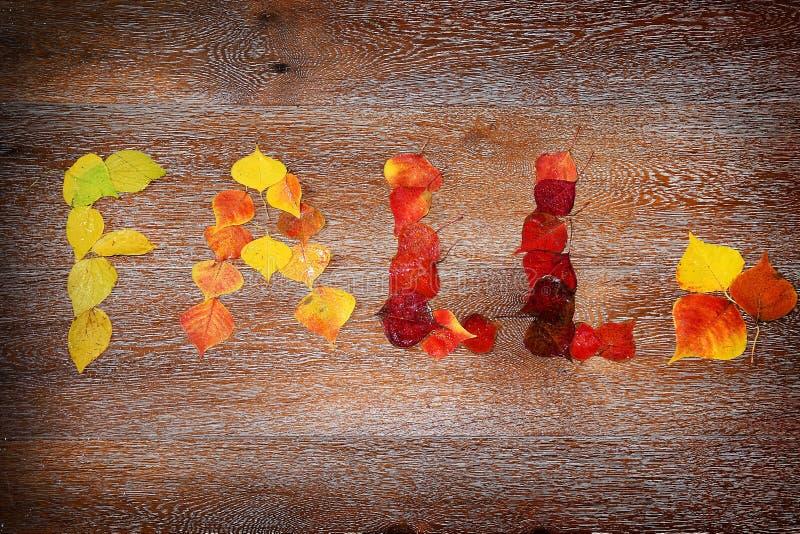 Inscrição - queda, escrita com as folhas de outono coloridas fotografia de stock