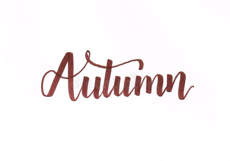 Inscripción de las letras de la mano del ` del otoño del ` en marrón con flourishes ilustración del vector