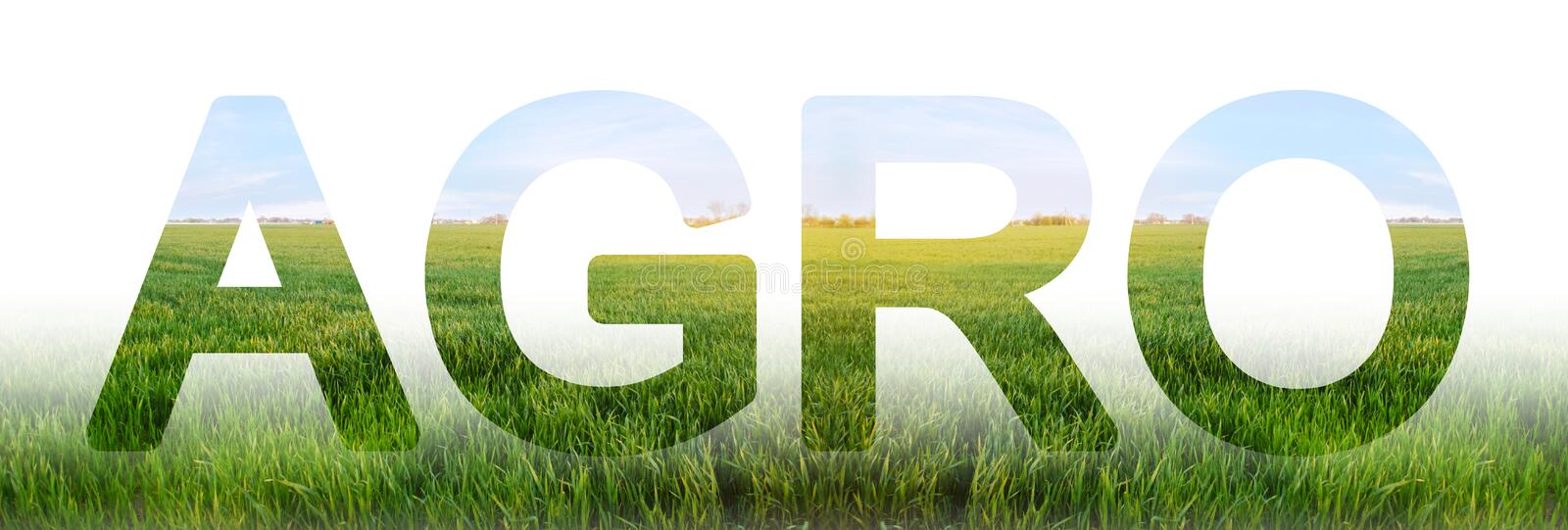 The inscription Agro on the background Young wheat green field pasture. agro-industry. integrated solutions to increase royalty free illustration