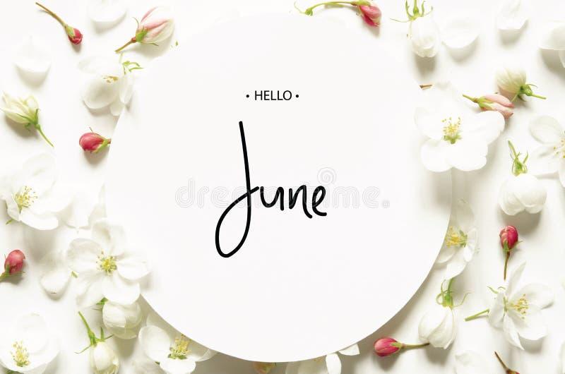 Inscription bonjour juin Fleurs fra?ches d'?t? photo libre de droits