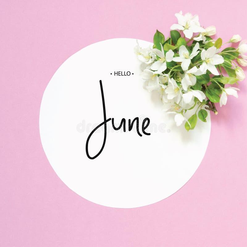 Inscription bonjour juin Vue avec les fleurs fra?ches d'?t? Vue sup?rieure images stock