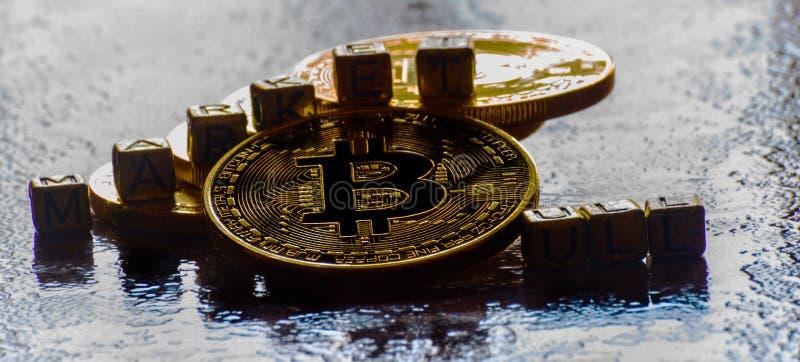 inscription bull market with Crypto currency Golden Bitcoin, BTC, macro-shot coin, bitcoin mining concept stock photography