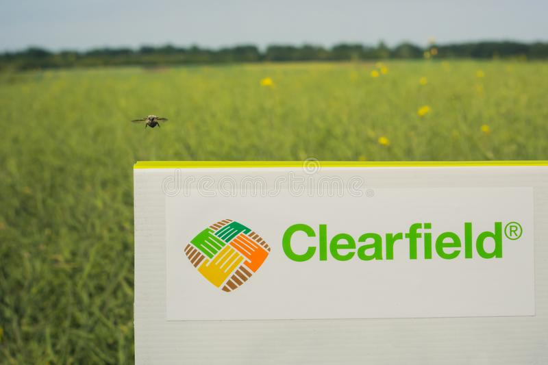 Inscription on the Clearfield sign, against the background of the canola field. The insect is flyin. Vinnitsa/Ukraine - 05/24/2018: inscription on the Clearfield royalty free stock photos