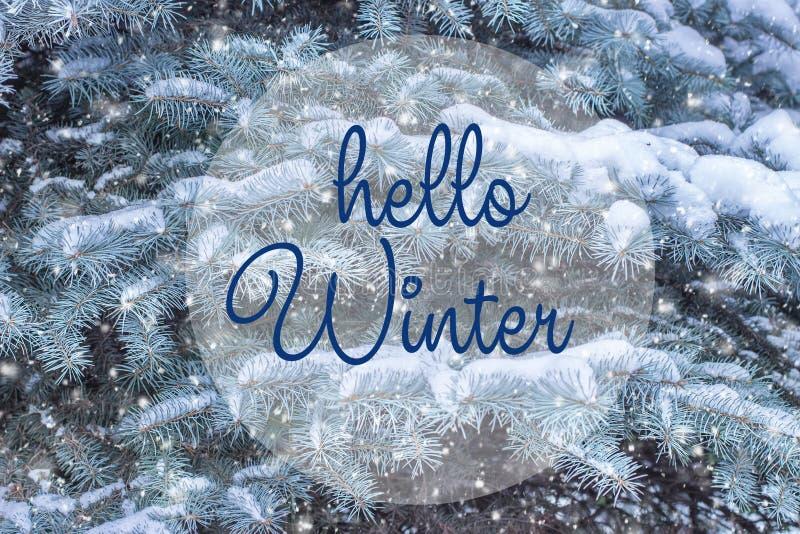 Inscription de dessin d'hiver de bonjour de main Compositio de vacances d'hiver images stock