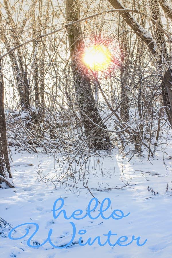 Inscription de dessin d'hiver de bonjour de main Composition en hiver photographie stock