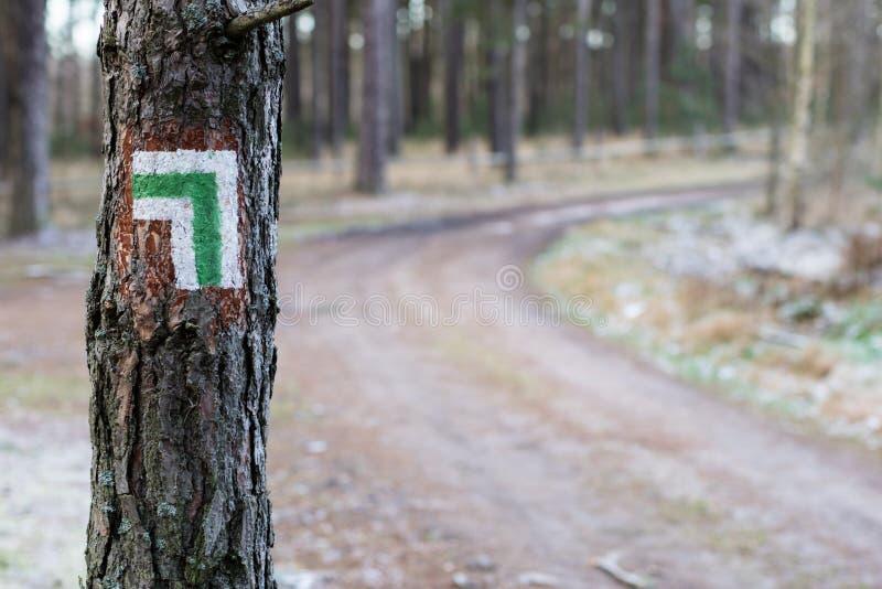 Inscription de l'itinéraire de touristes Un panneau routier de touristes sur l'écorce de image stock