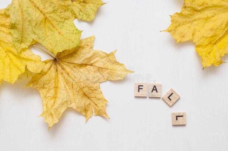 Inscription fall and yellow maple leaves on a white background. Wooden plates with the inscription on the autumn background. stock images