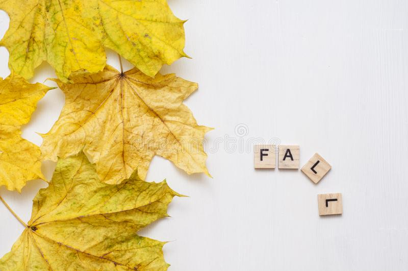 Inscription fall and yellow maple leaves on a white background. Wooden plates with the inscription on the autumn background. Inscription fall and yellow maple royalty free stock image