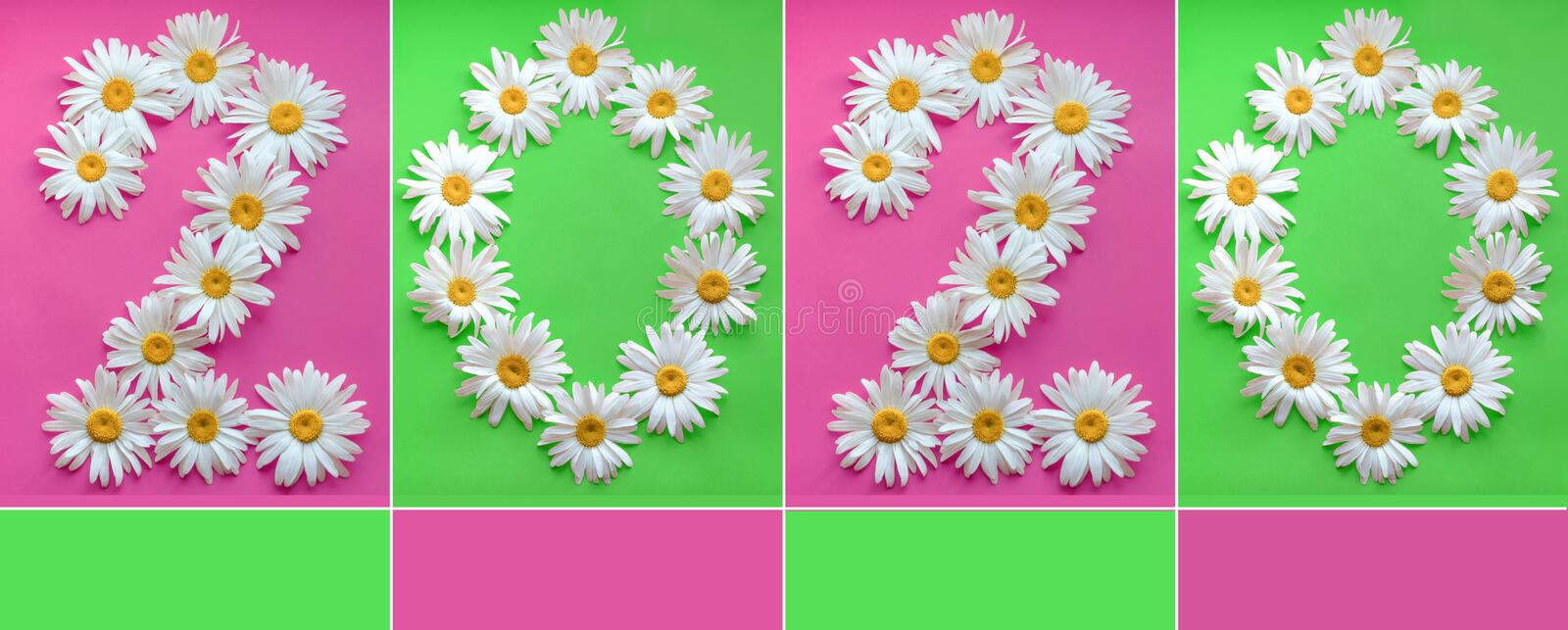 Inscription 2020 from fresh daisies on a colored background. 0, 2, arabic numeral. Happy New Year 2020. Large daisies create a stock photography