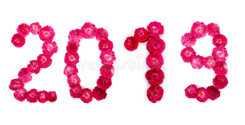 Inscription 2019 from fresh pink and red rose flowers. Happy New Year stock image