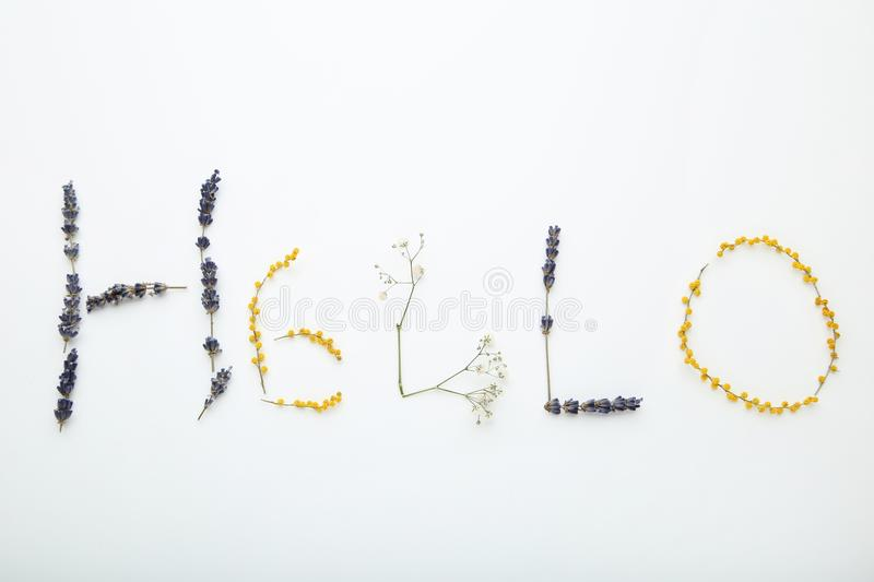Inscription Hello by flowers stock photo
