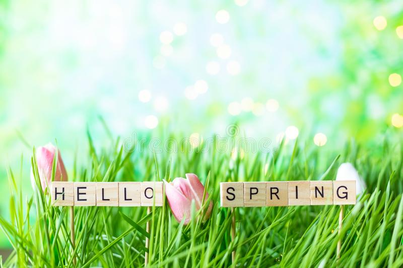 Inscription Hello spring on the background of green summer grass with dew stock image