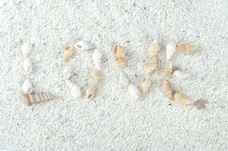 The inscription love, made of shells on the sand royalty free stock image