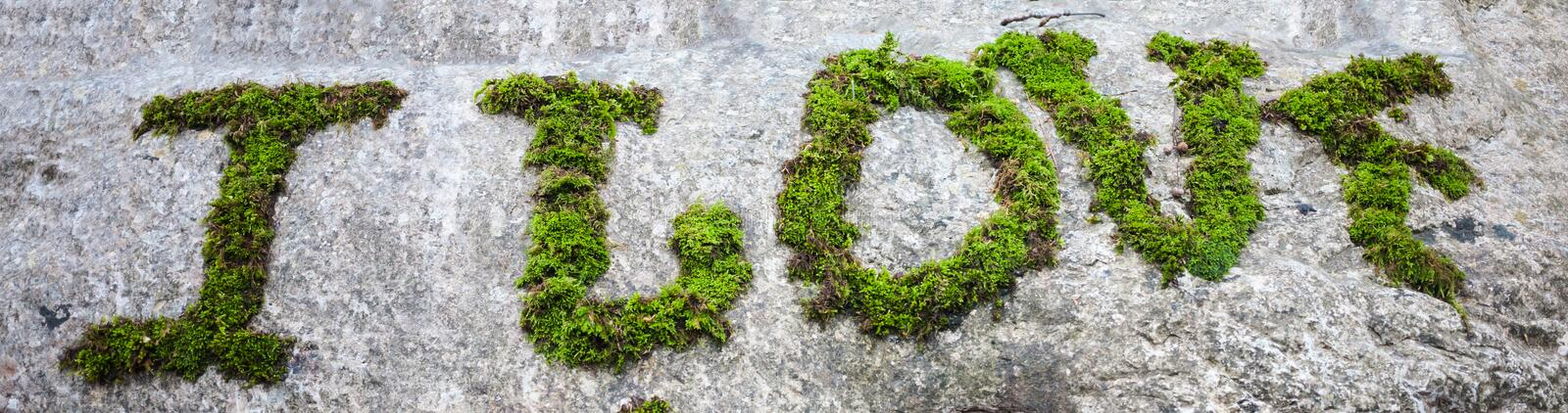 Inscription with moss on the stone stock image