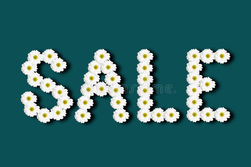 Inscription sale lined with chamomile flowers on a colored background. Inscription sale lined with chamomile flowers with shadow on a colored background royalty free stock images
