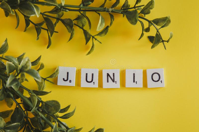 The inscription verano in spanish on the letters of the keyboard on a yellow background with branches flowers stock photo
