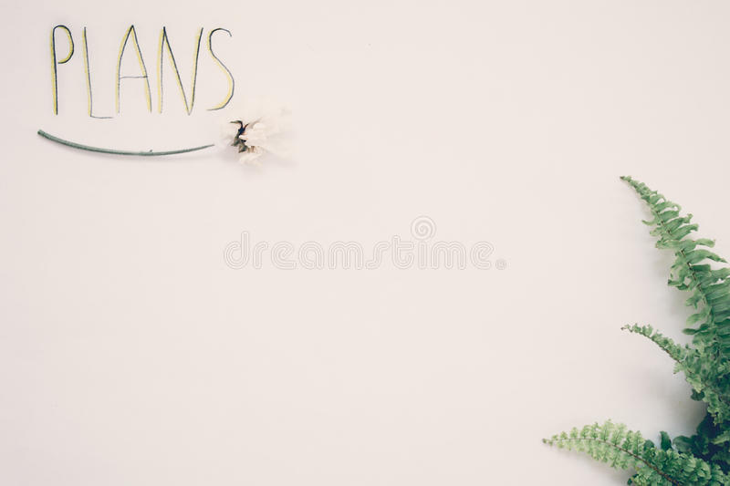The inscription on a white background with the leaves of plants royalty free stock images