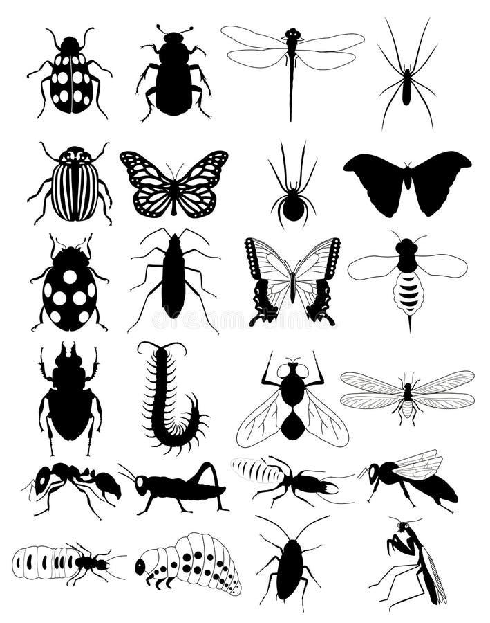 Insect royalty-vrije illustratie