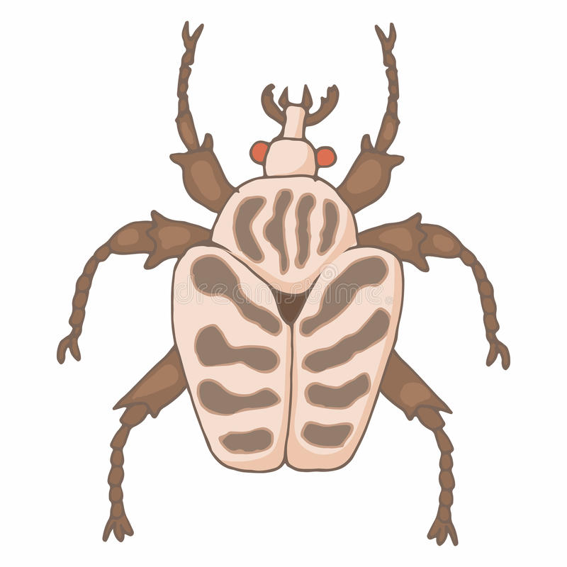 Insect bug icon, cartoon style vector illustration