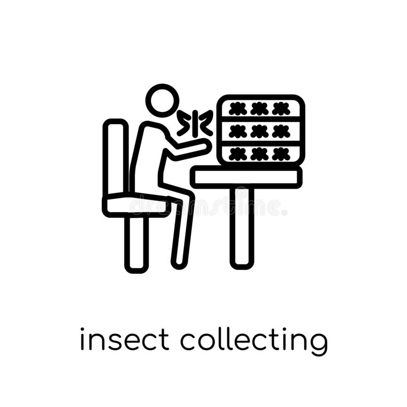 Insect collecting icon. Trendy modern flat linear vector Insect. Collecting icon on white background from thin line Activity and Hobbies collection, editable vector illustration