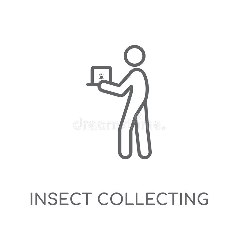 Insect collecting linear icon. Modern outline Insect collecting. Logo concept on white background from Activity and Hobbies collection. Suitable for use on web vector illustration