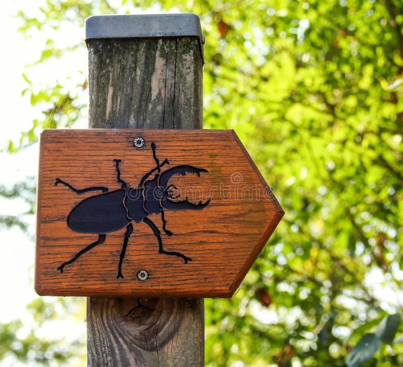 Insect direction sign. In the forest stock photos