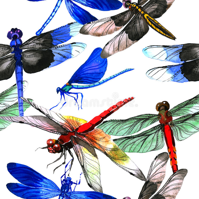 Free Insect Dragonfly Pattern In A Watercolor Style Isolated. Stock Photos - 94903253