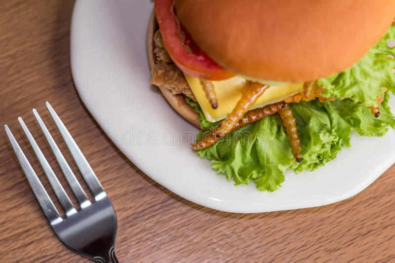 Insect food. Potatoes fried and Hamburgers full face with Spices, Vegetables, fried insects, Lettuce, Cheese, fried chicken on wooden plate with green table royalty free stock images