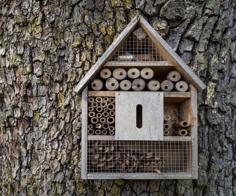 Insect Hotel a forma di casa immagini stock libere da diritti