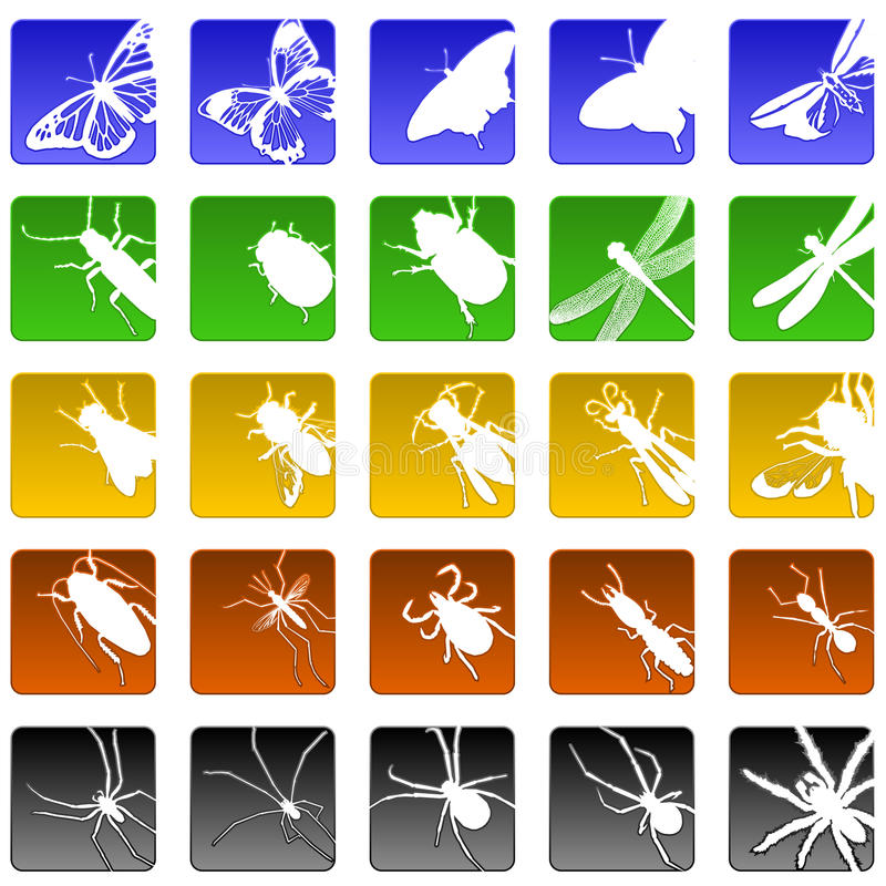 Insect Icons Stock Photography