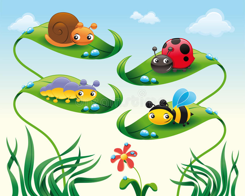 Insect on the leafs. Funny cartoon and vector characters