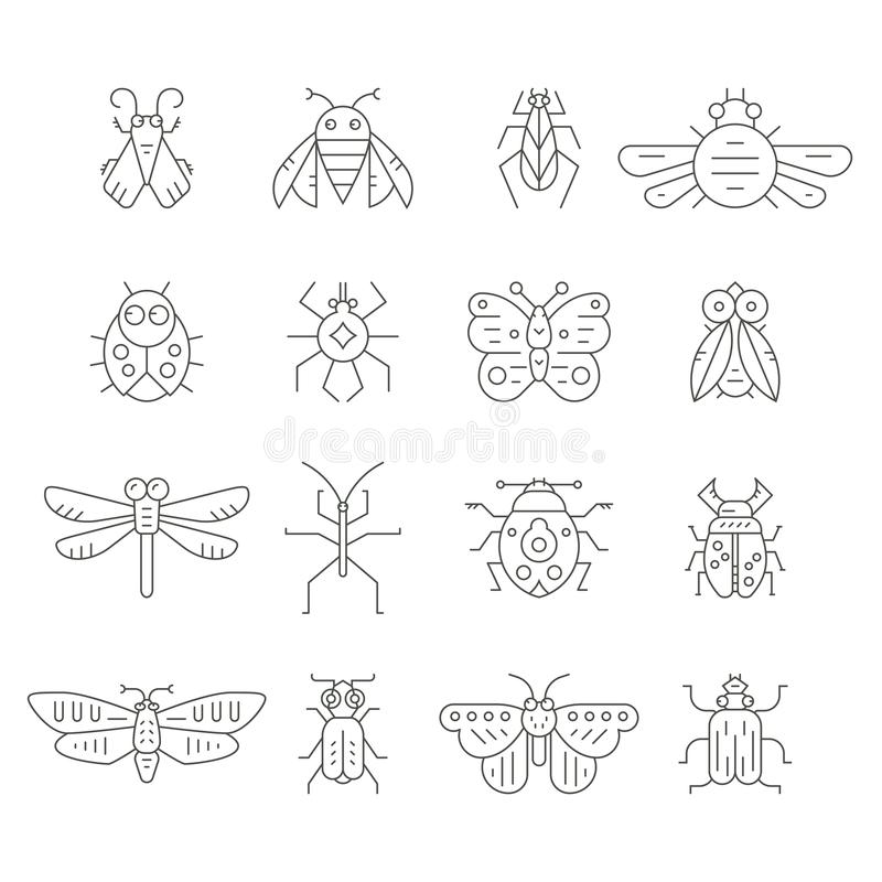 Insect Line Icons. Collection of insects made in thin line vector style. Bug symbols, nature elements. Perfect illustration of insects for coloring book stock illustration