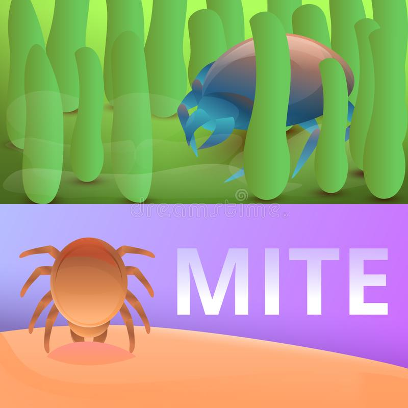 Insect mite banner set, cartoon style stock illustration