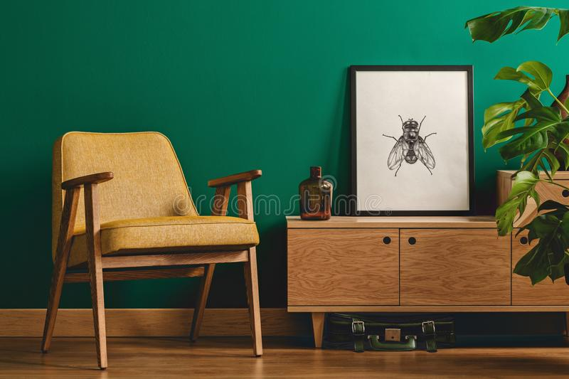 Insect poster and yellow armchair stock photo