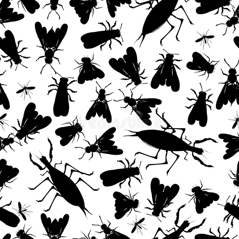 Download Insect seamless pattern stock vector. Image of wasp, graphic - 31406054