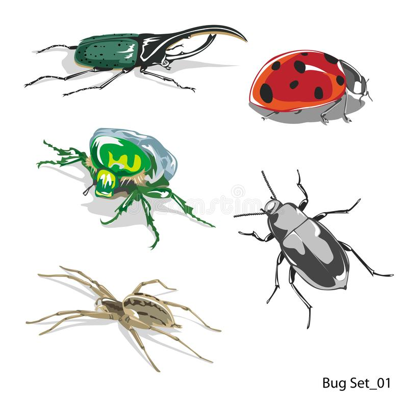 Insect  set 01, lady bug, bee, fly, spider, etc, isolated on white background for book illustration - Vector vector illustration