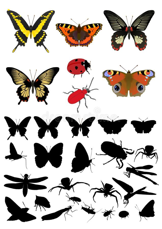 Free Insect Silhouette& Picture Set Royalty Free Stock Images - 13666539