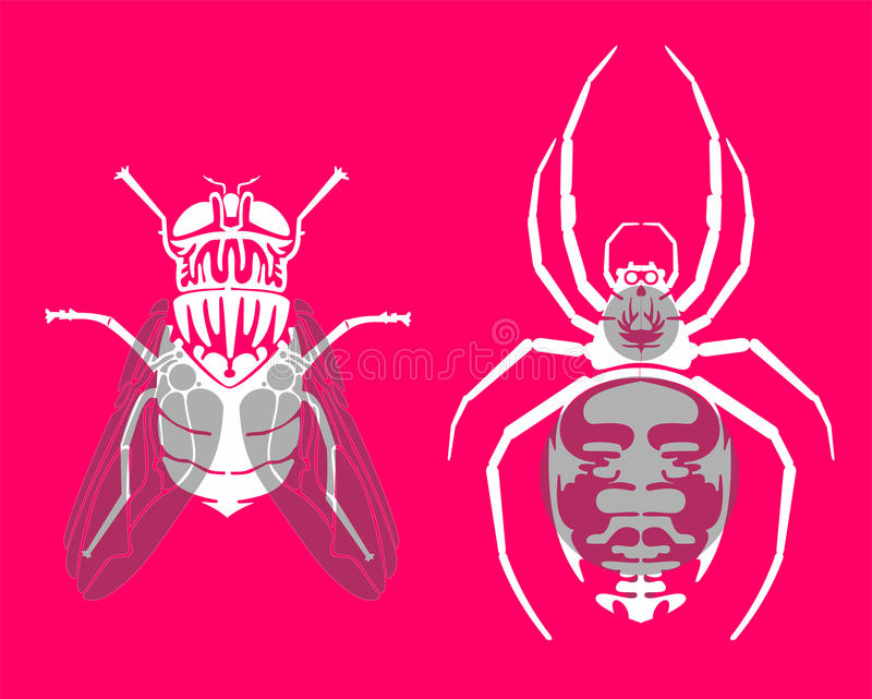 Download Insect silhouettes stock vector. Illustration of pinkish - 20754593