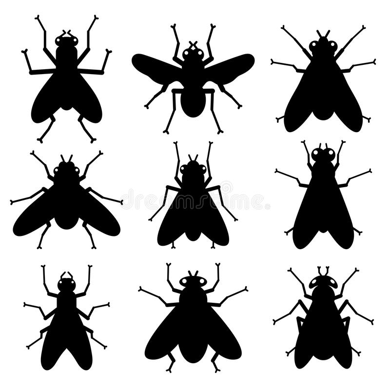 Insect Silhouettes Stock Photos
