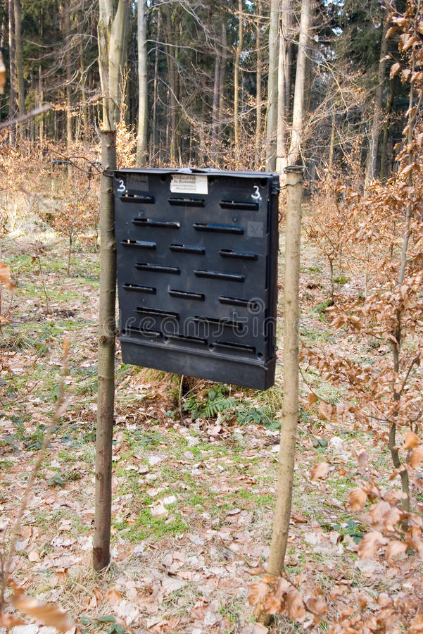 Insect trap. Close up insect trap in forest stock image