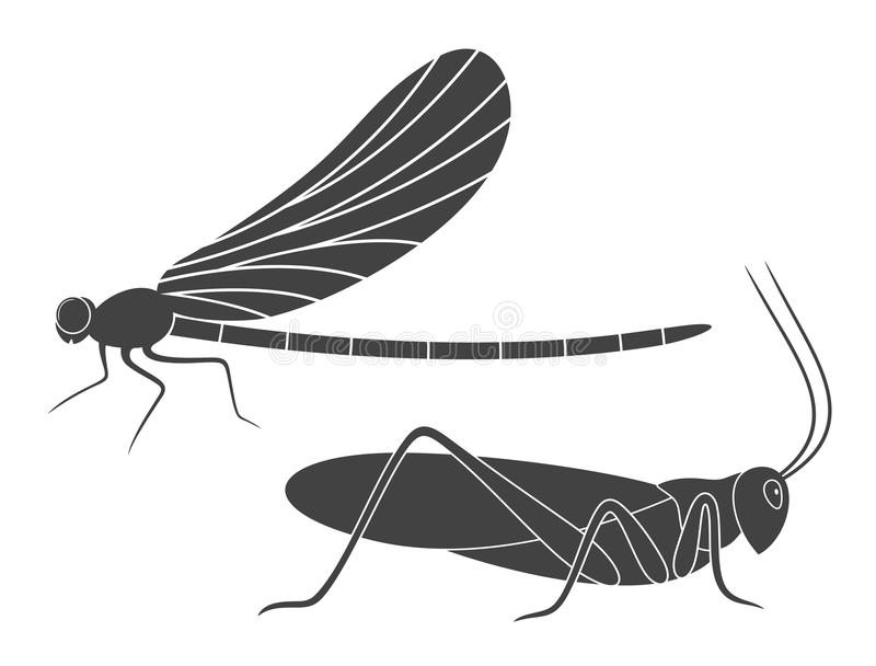 Insect. Vector. Dragonfly Grasshopper Locust royalty free illustration