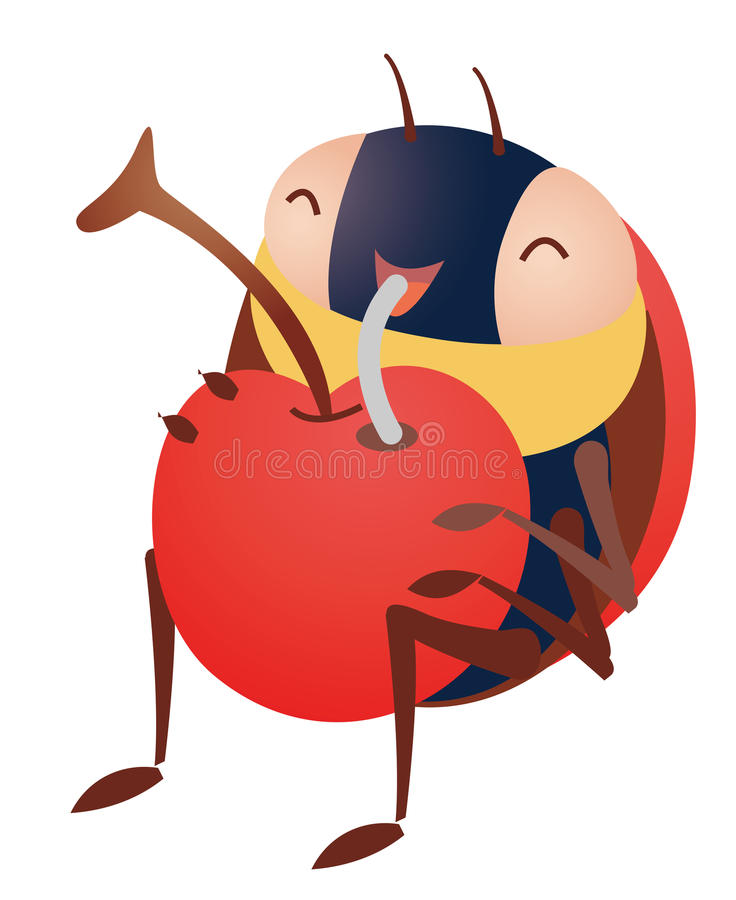 insecte de cerise illustration stock