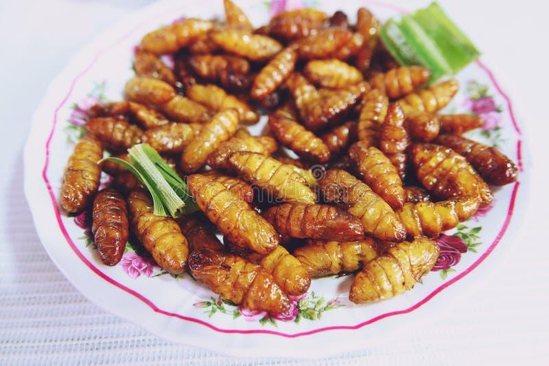 Insecte en bambou frit de vers à soie, nourriture populaire de rue de casse-croûte en Thaïlande photos libres de droits