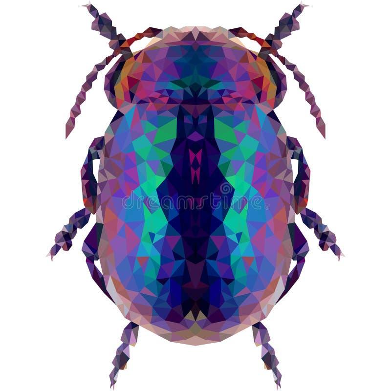 Insecte géométrique bleu profond de scarabée sur un fond blanc images libres de droits