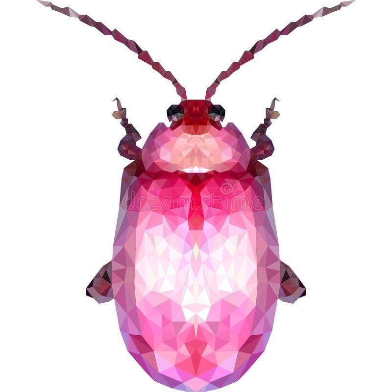 Insecte géométrique rose de scarabée sur un fond blanc photos libres de droits