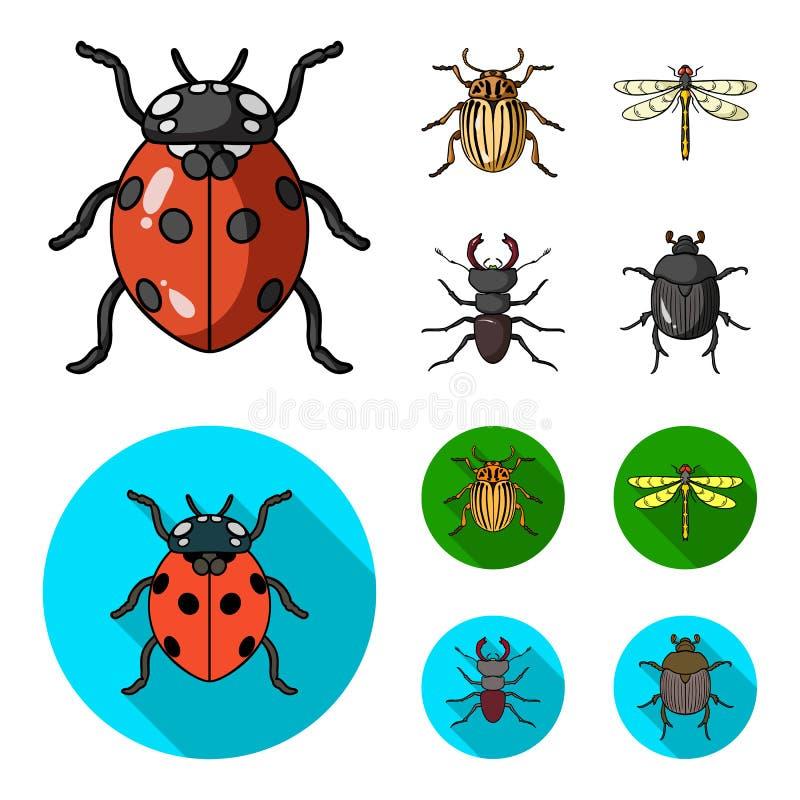 Insecte, insecte, scarabée, patte Les insectes ont placé des icônes de collection dans la bande dessinée, Web plat d'illustration illustration libre de droits