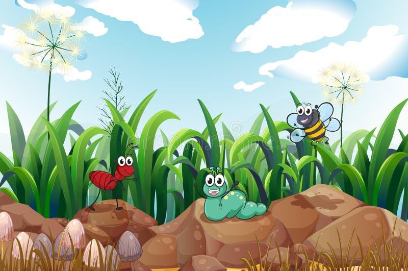 Insecten boven de rotsen stock illustratie