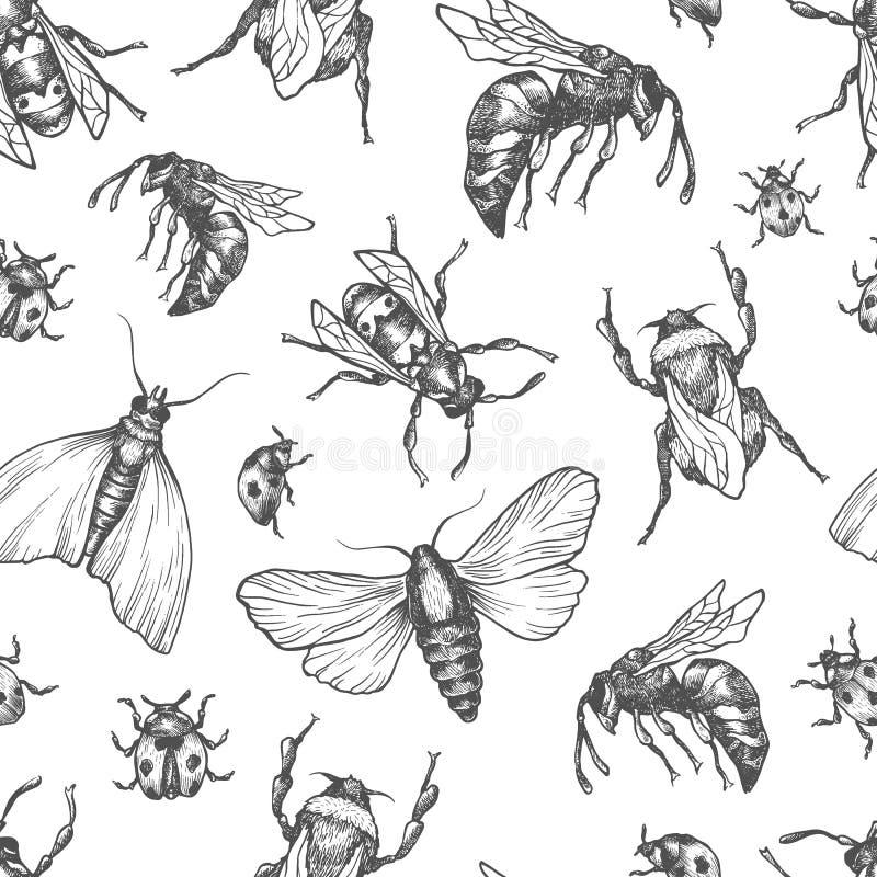 Insectenpatroon stock illustratie