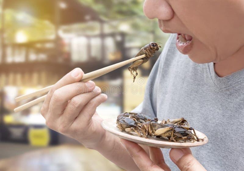 insectes-de-nourriture-insecte-mangeur-d-hommes-cricket-sur-des-baguettes-les-grillons-ont-fait-frire-croustillant-pour-mangent-154358784