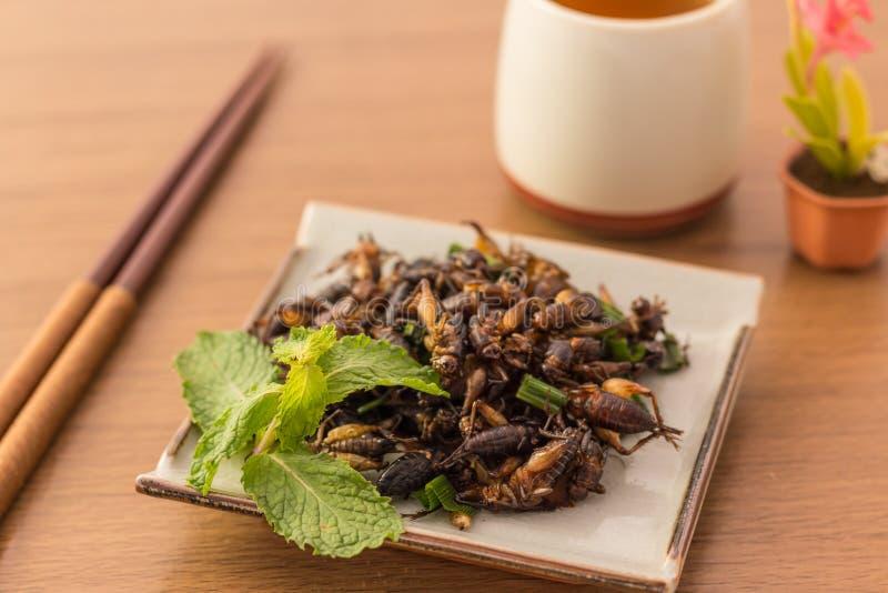 Insectes frits photo libre de droits